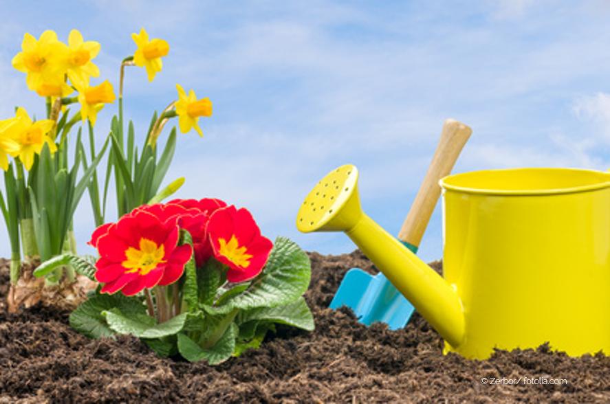 Der Blumengarten: eine Metapher über das Ich