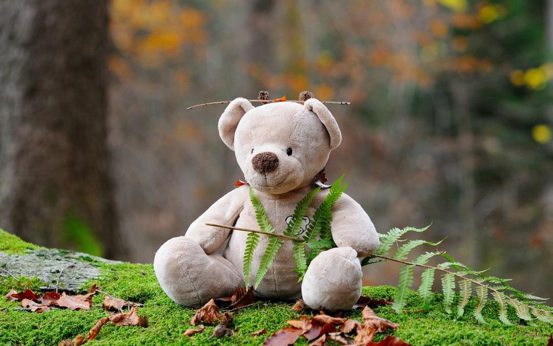 Wer fragt … oder der Bär und der Hase
